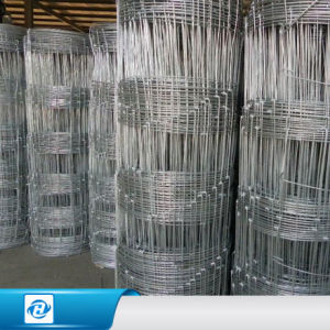 China Fixed Hinge Joint Galvanized Iron Wire Woven Mesh Horse ...