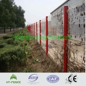 Welded Wire Mesh (HT-W-012) pictures & photos