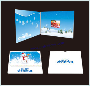 Professional Video Greeting Card, Video Brochure (ZXS-3275)