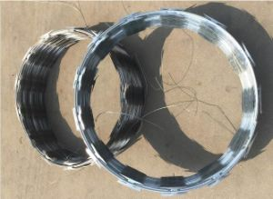 Galvanized Blade Barbed Wire Cbt65/Razor Factory pictures & photos