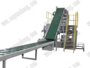 Paper Sacks Packaging Machine (GFP1D1) pictures & photos