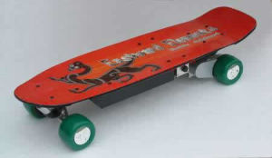 Remote Control Skateboard / Electric Skateboard (RC36V-600B)