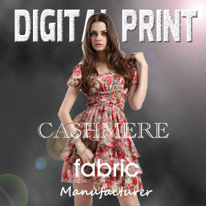 Manufacturer Digital Cashmere Printing on Fabric pictures & photos