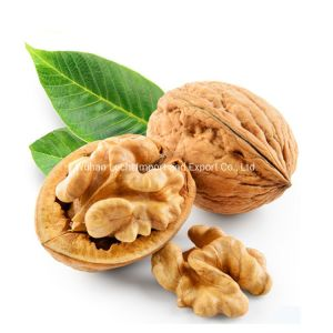 Walnuts - Wuhan Lechi Import and Export Co , Ltd  - page 1