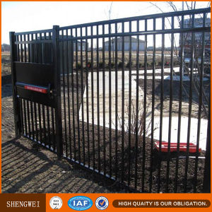 Welded Steel Palisade Garden Fence pictures & photos