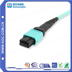 Optical Accessories for MPO Patchcord pictures & photos