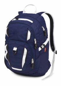 Everyone Backpack Bag pictures & photos