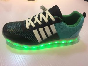 New Style Moer Color LED Shoes/ Casual Shoes /Leisure&Comfort Shoes