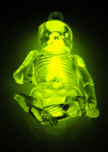 Glow in The Dark Skeleton for Halloween pictures & photos
