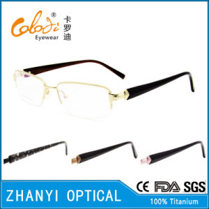 Latest Design Titanium Eyeglass (8324)