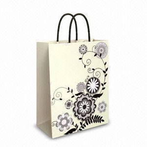 Paper Packaging Bag, Paper Shopping Bag, Paper Bag Printing pictures & photos
