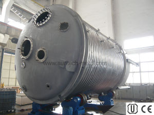 S32205 Duplex Stainless Steel Reactor - Pressure Vessel (P010) pictures & photos