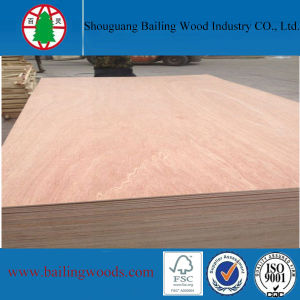 3.0mm Bintangor Veneer Commercial Plywood to Philippines