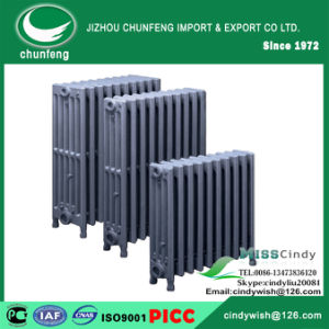 Cast Iron Hot Water Heaters Popular in American Market 4X19""