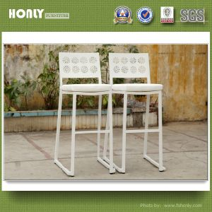 Stupendous New Carving Design Outdoor Chairs Aluminum Frame High Bar Stool Squirreltailoven Fun Painted Chair Ideas Images Squirreltailovenorg