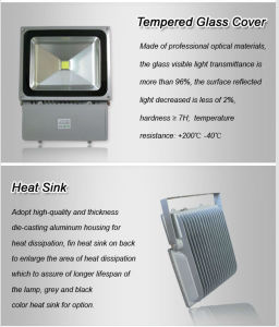LED Light LED Outdoor Light 80W LED Floodlight pictures & photos