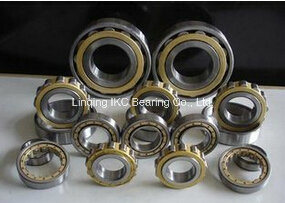 Cylindrical Roller Bearing Nj322, Nj2222, N222, Nu2220, Nj2220, N322, Nu322, Nu2322, Nj2322, Nn3022 pictures & photos