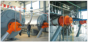 Pulverized Coal Steam Boiler and Hot Water Boiler (WNS/SZS) pictures & photos