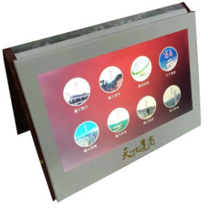 Paper Material and Artificial Style Digital Video Greeting Card pictures & photos