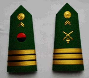 Military Shoulder Epaulet pictures & photos