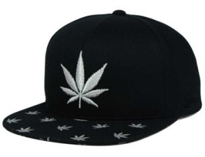 6 Panels Black Cotton Snapback Hat and Cap with White 2D Leaves Embroidery Brim pictures & photos