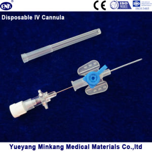 Blister Packed Medical Disposable IV Cannula/IV Catheter Butterfly Type 22g pictures & photos