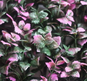 Artificial Purple Leaves Outdoor Hedge (MZ188004B) pictures & photos