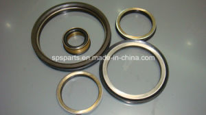 Floating Oil Seal Group pictures & photos