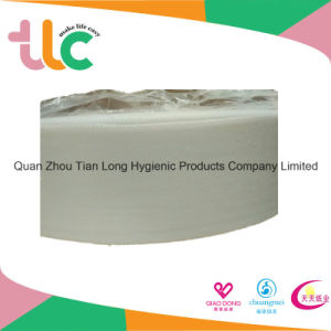 China Supplier Non Woven Fabrics Roll in Quanzhou