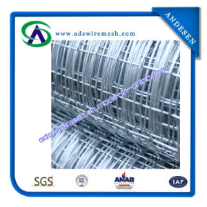 Galvanized Square Wire Mesh/Galvanized Welded Wire Mesh Fence (ISO9001, From E, RoHS) pictures & photos