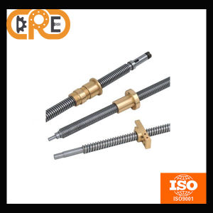 Chrome Steel Gcr15 and China Made for Electric Mahcines Tr14X2 Acme and Lead Screw pictures & photos