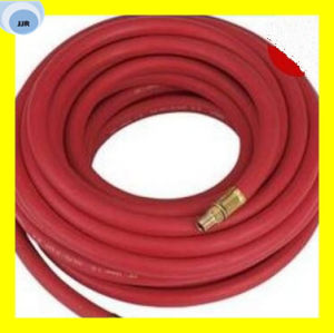Steel Wire Braided Steam Hose 2 W/B pictures & photos