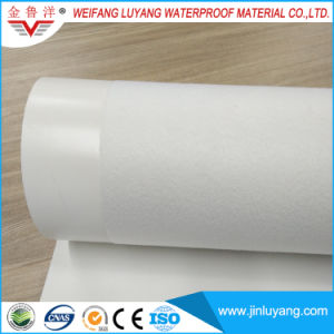 Tpo Waterproof Membrane for Flat Roof with Excellent Weather Resistance