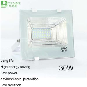 30W AC85V-265V Cornucopia White Color LED Floodlight
