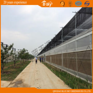 Po Film Multi-Span Greenhouse with Sunshade Net pictures & photos