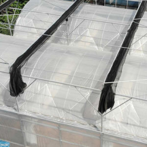 Multi-Span Arch Plastic Film Greenhouse with Evaporative Cooling Pad