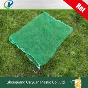 Green Mesh Bag for Date Palm, Collecting and Protection HDPE Monofilament Palmmesh with Blacking String