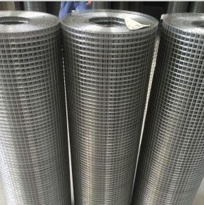 Galvaized/PVC Coated Welded Wire Mesh 1inch*1inch; 2inch*2inch (Factory) pictures & photos