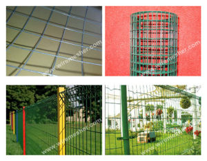 BWG26-8 PVC Coated Welded Wire Mesh--ISO9001: 2000