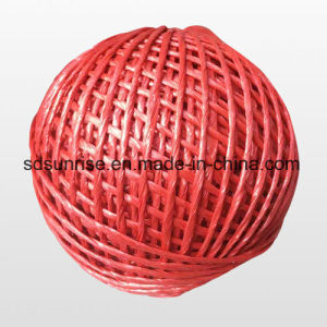 Color PP Packing Twine Baler Twine pictures & photos