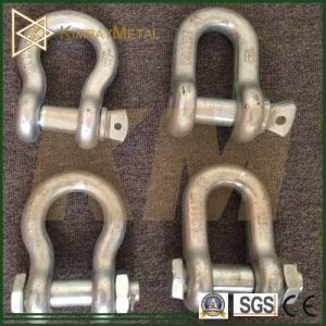 Us Type Hot DIP Galvanized Drop Forged Shackle