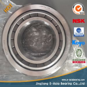 SKF Ceramic Ball Bearing pictures & photos