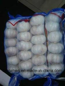 New Crop Top Quality Chinese Fresh Hybridization Garlic Low Price pictures & photos