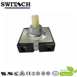 SGS Electrical Changeover 4 Key Model Position 3A/250V Rotary Switch Used in Home Appliance