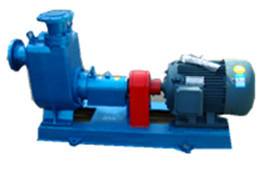 Cyz Marine Centrifugal Oil Pump for Petroleum Products