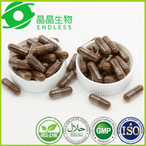 Lingzhi Extract Powder Capsule Organic Herbal Anti Cancer Drugs pictures & photos