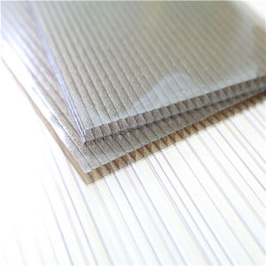 10mm Clear Polycarbonate Hollow Sheet for Roofing Material