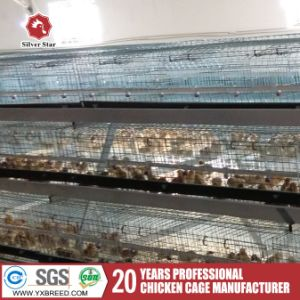 10, 000 Chicken Birds Cage Used for Nigeria/ Zambia Farm (A-3L90) pictures & photos