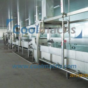 Industrial Vegetable and Fruit Pretreatment Processing Production Line pictures & photos