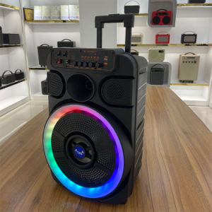12 Inch Breathing Light Karaoke Trolley Speaker Dancing